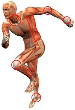 Mantendo a saúde na Lesão Medular